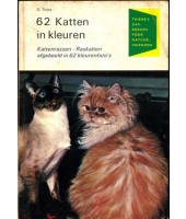 62 katten in kleuren - D. Thies